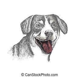 スケッチ, 犬, 手, 背景, 引かれる, 白い額面