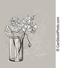 スケッチ, 花, ロータス, anthurium, つぼ, ガラス, ベクトル, 背景, カード, 蘭