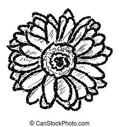 スケッチ, 花, backgroound, 白いひなぎく