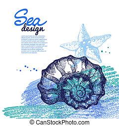 スケッチ, 貝殻, 手, バックグラウンド。, 海, 海事, 引かれる, design.