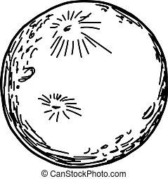 スケッチ, 隔離された, イラスト, 手, ベクトル, 背景, 引かれる, 白い月