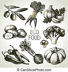 スケッチ,  eco, セット, イラスト, 手, 食物, ベクトル, 野菜, 引かれる