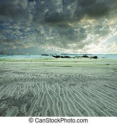 スケルトン海岸
