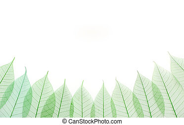 スケルトン, leafs, seamless, 抽象的, 背景