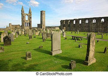 スコットランド, グラウンド, st., andrews, 大聖堂, gb