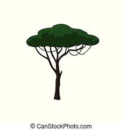 スタイル, 自然, 木, バックグラウンド。, アフリカ, 白, アカシア, 漫画