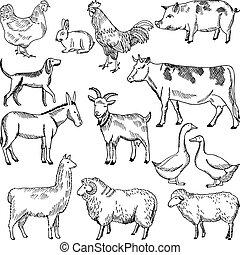 スタイル, 農業, 農場, 型, イラスト, 手, 引かれる, animals.