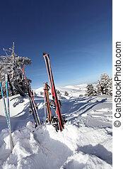 スタックした, スキーをする, 雪