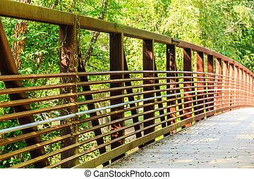 スチール梁, 森林地帯, 橋