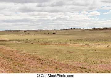ステップ, mongolian, 風景, 砂漠