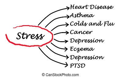 ストレス, 結果