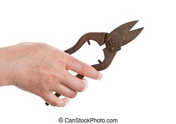 スニップ, 手を持つ, 錫