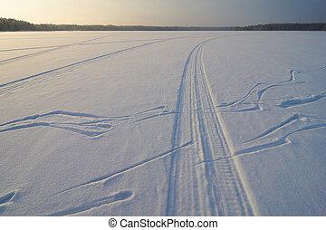 スノーモービル, 跡, 上に, 雪