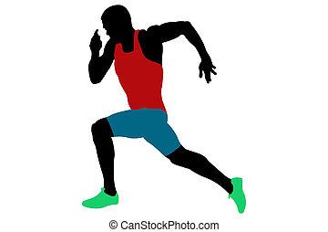 スプリンター, 運動選手, 筋肉