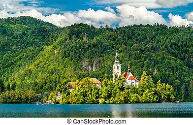 スロベニア, 島, 出血させる, 仮定, 教会, mary