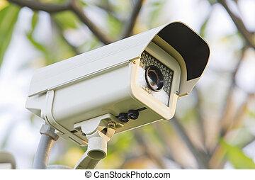 セキュリティー, cctv, カメラ。