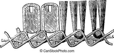 セクション, カーペット, engraving., 型