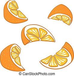 セット, に薄く切る, 区分, 水分が多い, 明るい, ベクトル, oranges.