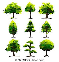 セット, の, 木