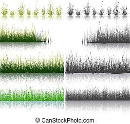 セット, の, 緑, そして, 黒, 草, 隔離された, 白