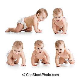 セット, の, 這う, 赤ん坊, 身に着けていること, diaper., 隔離された, 白, bakground.