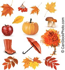 セット, の, autumn-themed, objects., ベクトル