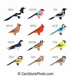 セット, カラフルである, すずめ, icons., かささぎ, 枢機卿, ベクトル, ツバメ, 鳥