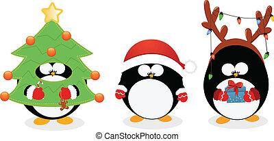 セット, クリスマス, ペンギン