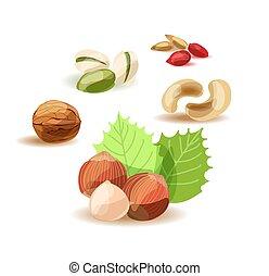 セット, ナット, バックグラウンド。, nuts., 様々, 白