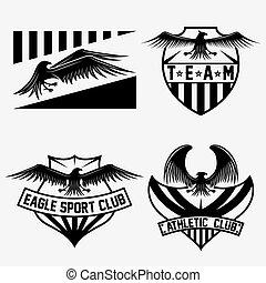 セット, ベクトル, デザイン, テンプレート, チーム, ワシ, スポーツ, 頂上