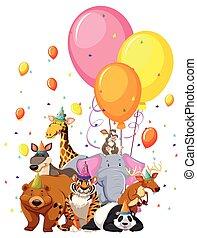 セット, 動物, birthday