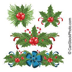 セット, 小枝, ベリー, 装飾, 西洋ヒイラギ, クリスマス