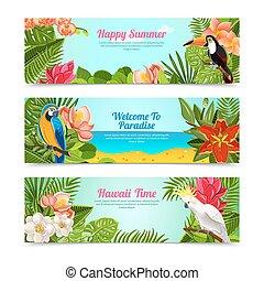 セット, 島, 熱帯の花, 旗, 横