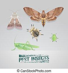 セット, 昆虫, イラスト, 現実的, ベクトル, 害虫