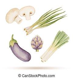 セット, 水彩画, vegetables.