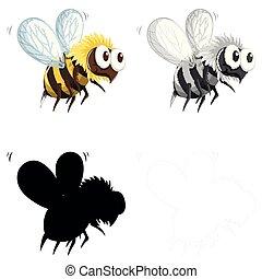 セット, 特徴, 蜂