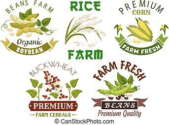 セット, 紋章, 農場, 豆, デザイン, 野菜, シリアル
