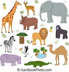 セット, 背景, らくだ, 国民, アフリカ, ライオン, シマウマ, 特徴, 隔離された, 動物, 象, 白, カバ, 公園, イラスト, キリン, サファリ, 野生生物, ゴリラ, ベクトル, アフリカ, 野生, ほ乳類, animalistic