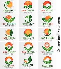 セット, 葉, &, 太陽, 緑, ロゴ