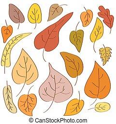 セット, 葉, 秋, バックグラウンド。, hand-drawn, 白