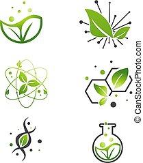 セット, 葉, 科学, 抽象的, 実験室, 緑, vegan