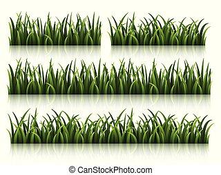 セット, 隔離された, 緑の背景, 白, 草
