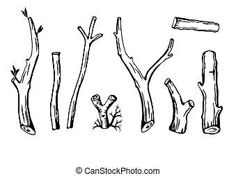 セット, branches.