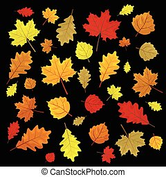 セット, illustration., カラフルである, leaves., random., 秋, バックグラウンド。, ベクトル, デザイン, leafs, 黒, 要素