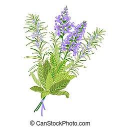 セージ, flowers., ローズマリー