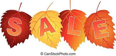 セール, テキスト, 上に, 秋の色, シラカバ, 葉