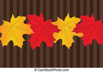 セール, 秋, 背景