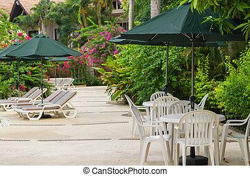ソファー, 庭, 傘, のまわり