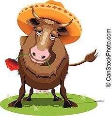 ソンブレロ, 牛