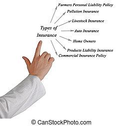 タイプ, の, 保険